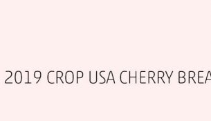 2019 crop USA cherry breaking news